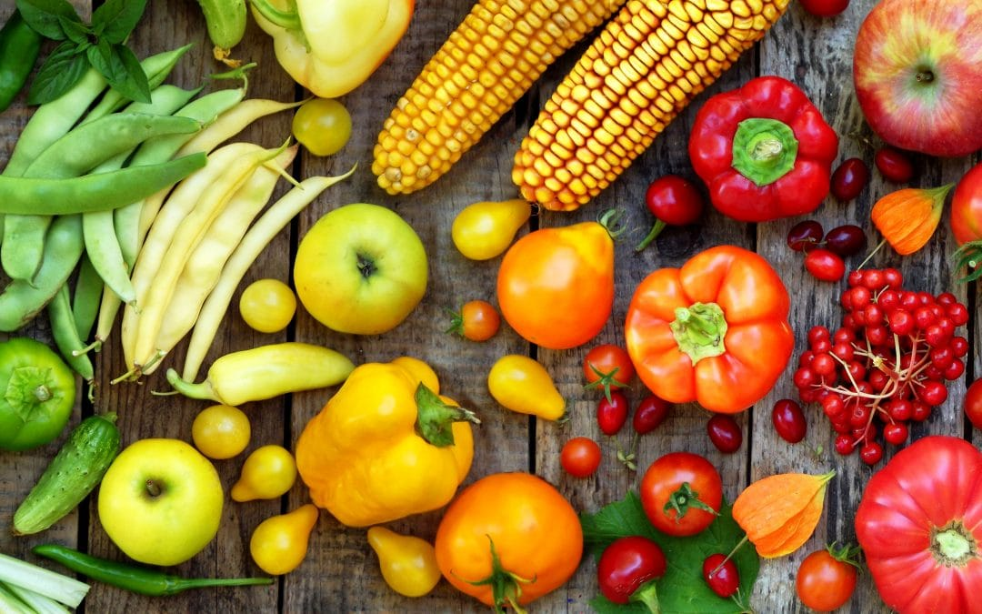 Vegan Nutrition 101: How To Get The Needed Nutrients Without Cruelty