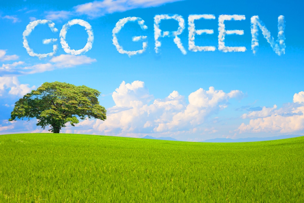 Your Complete Guide to Living Green