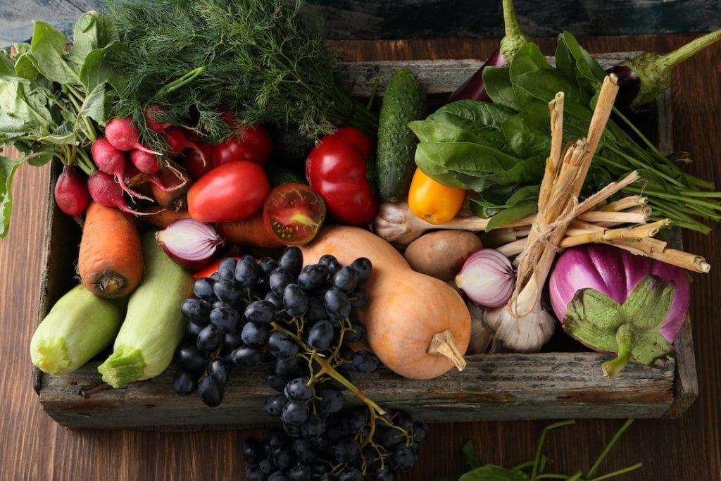 vegan food list